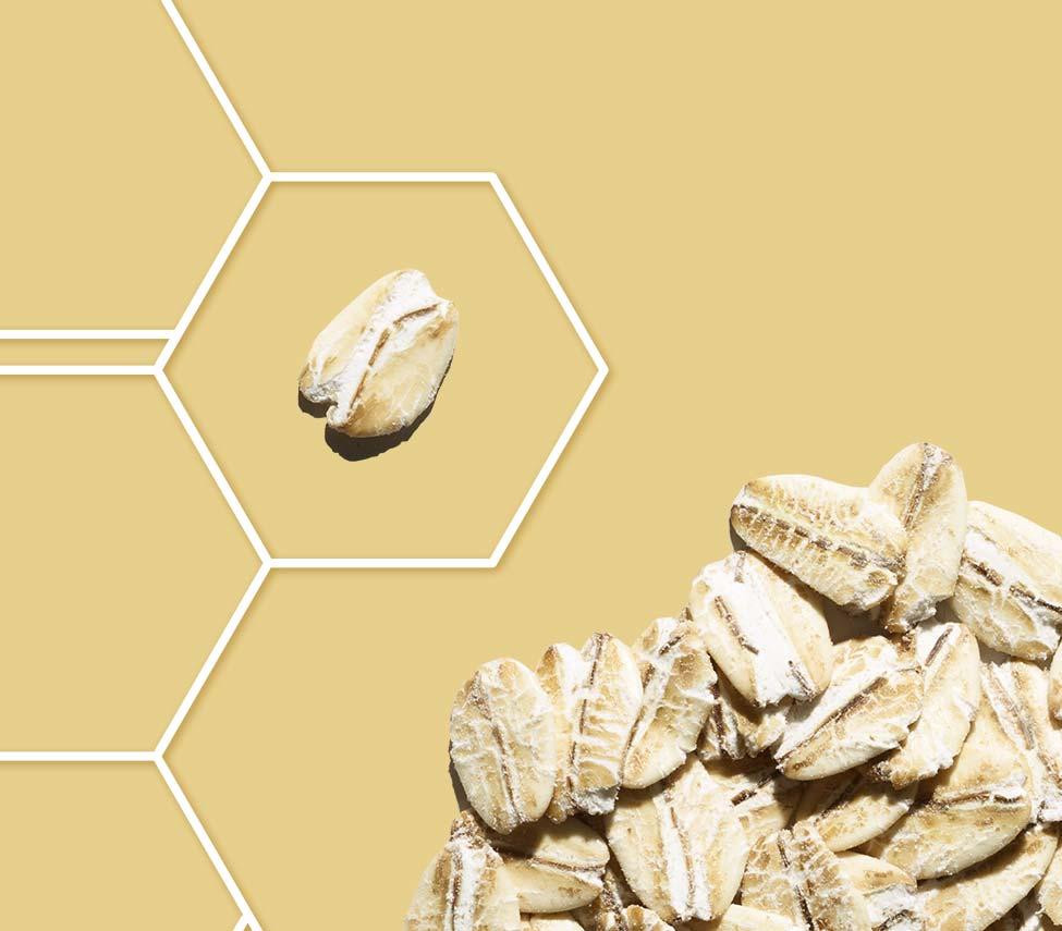 ทริปเปิ้ลโอ๊ตคอมเพล็กซ์จากอาวีโน่ผสานคุณค่าจากผงข้าวโอ๊ตธรรมชาติ